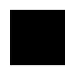 NDF_13_veka_Bulgaria_logo